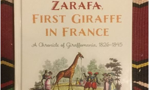 In the Footsteps of Zarafa